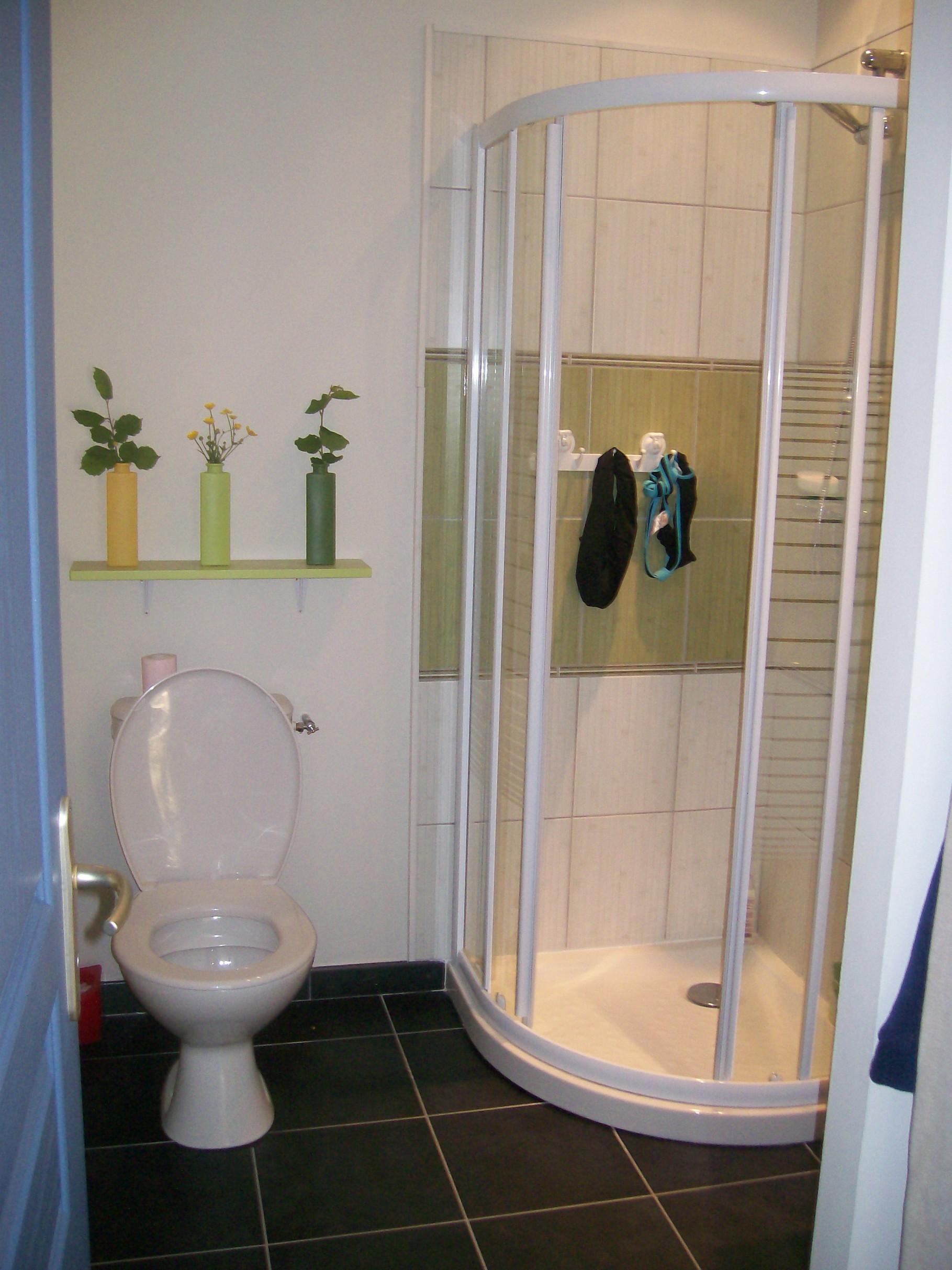 Suite parentale avec salle de bain sous comble for Mini salle d eau dans une chambre